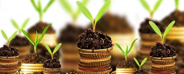 Money-Growth-Photo1